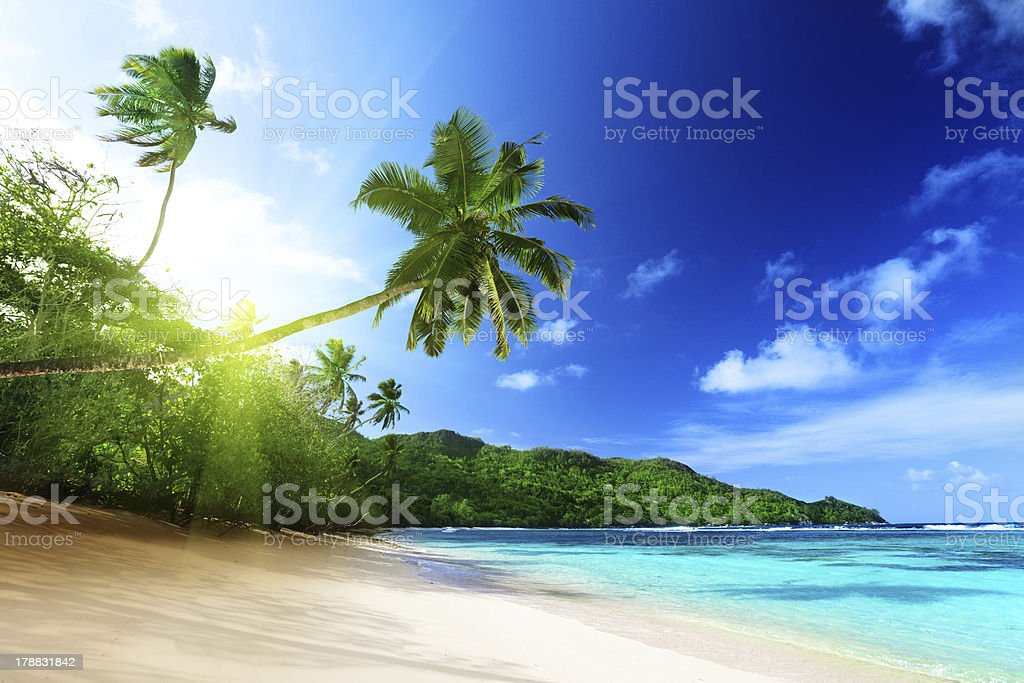 beach in sunset time on Mahe island, Seychelles stock photo
