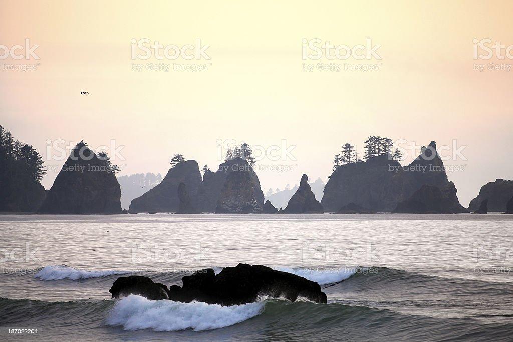 Beach in sunset, Washington Peninsula stock photo