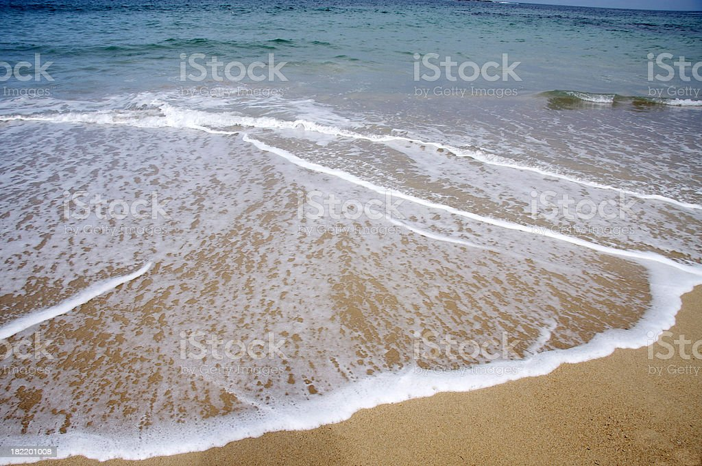Beach in Sydney royalty-free stock photo