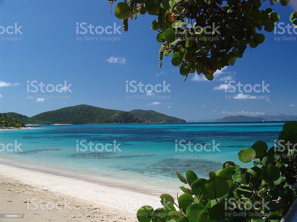 Beach in Virgin Islands stock photo