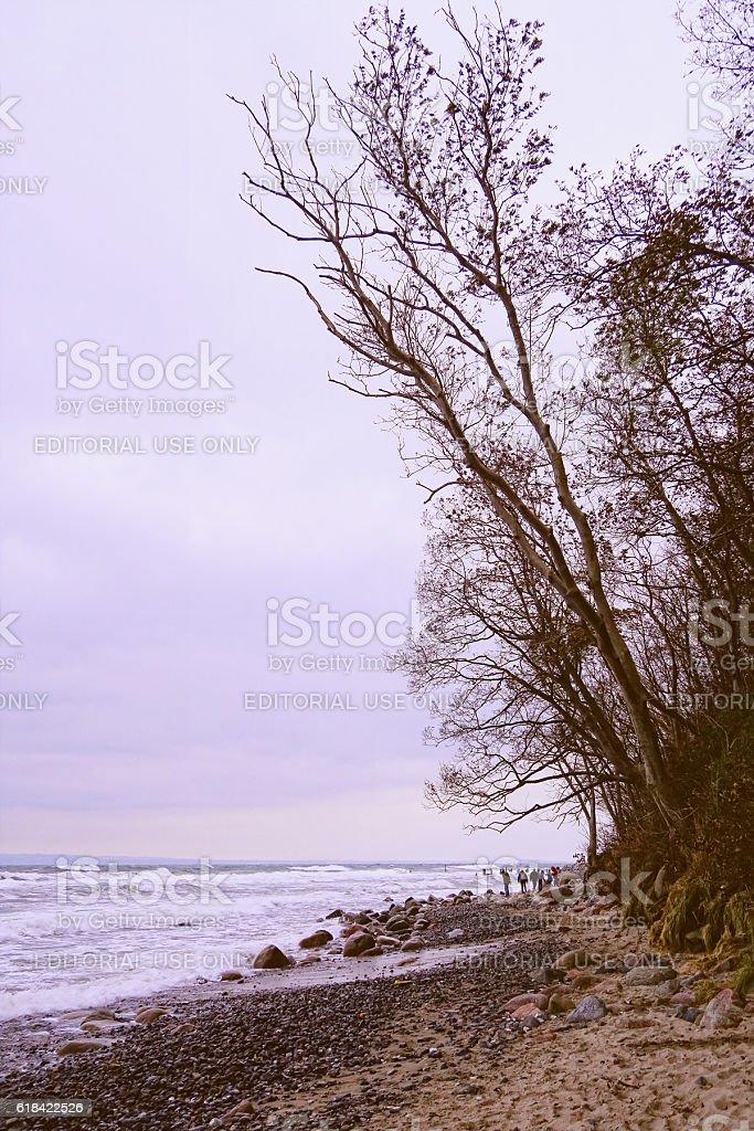 Beach landscape of Cape Arkona at Baltic sea coast. stock photo