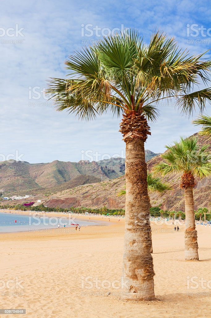 beach Las Teresitas, Tenerife, Spain stock photo