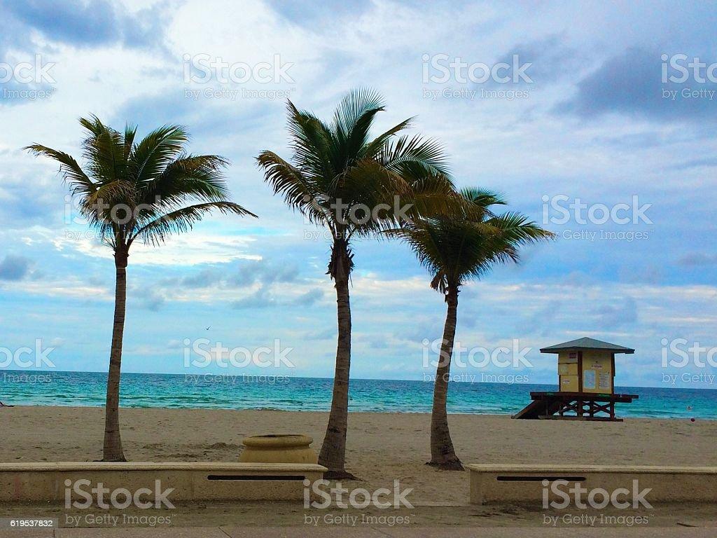 Beach Lifeguard stock photo