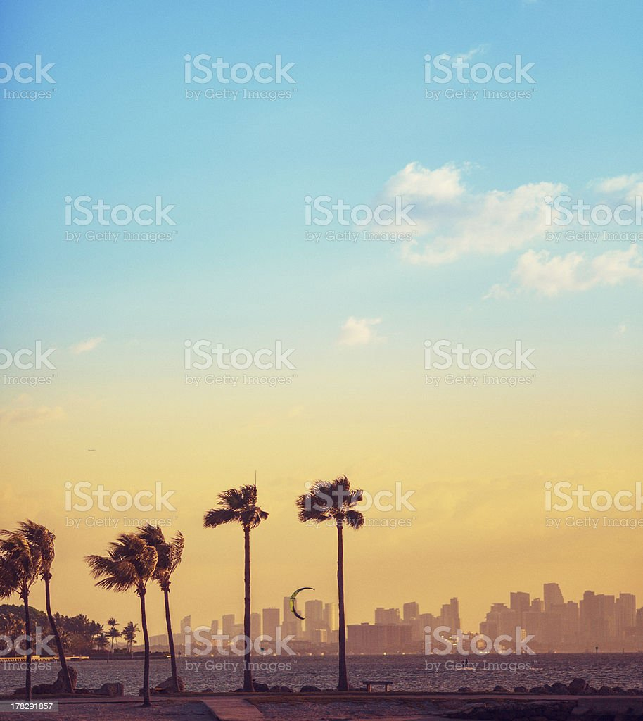 beach miami stock photo
