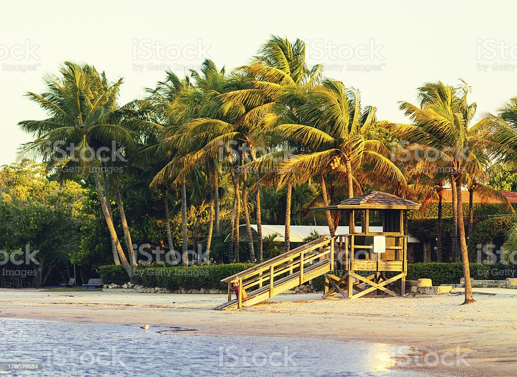 beach miami royalty-free stock photo