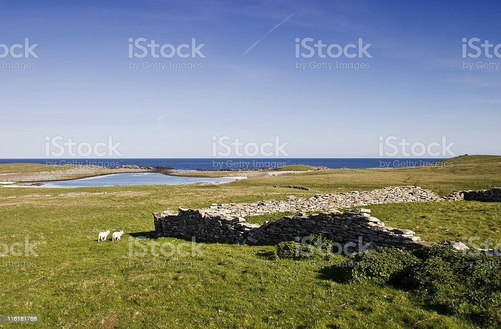 Beach moor royalty-free stock photo