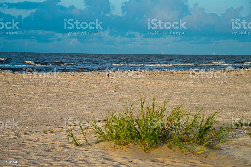 Beach Morning Light royalty-free stock photo