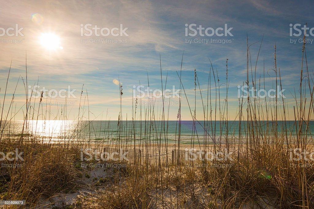 Beach Morning stock photo