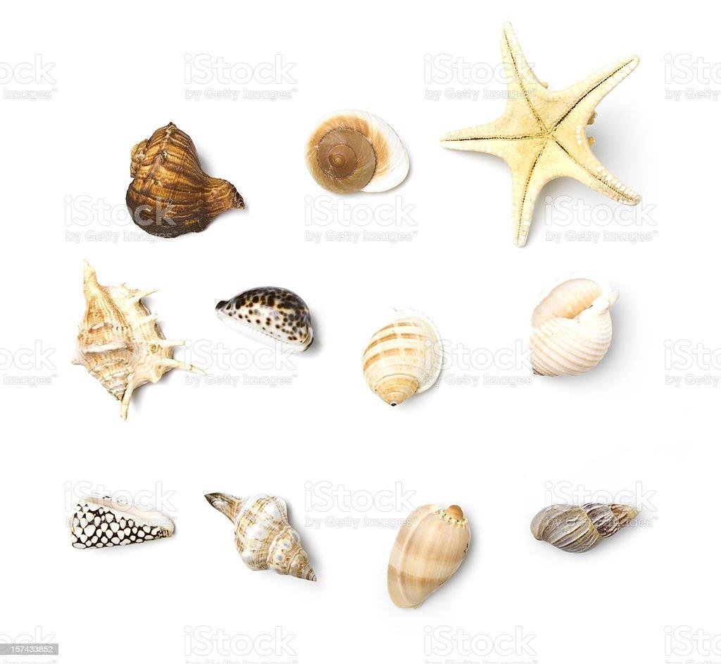 Beach Objects Series stock photo