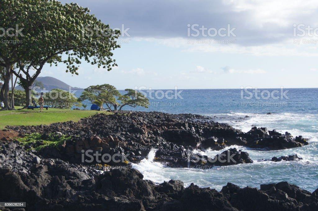 Beach Ocean Front Maui stock photo