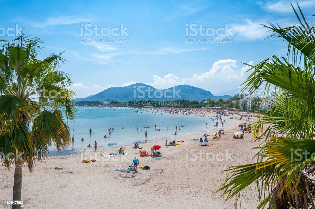 Beach of Alcudia, Majorca stock photo
