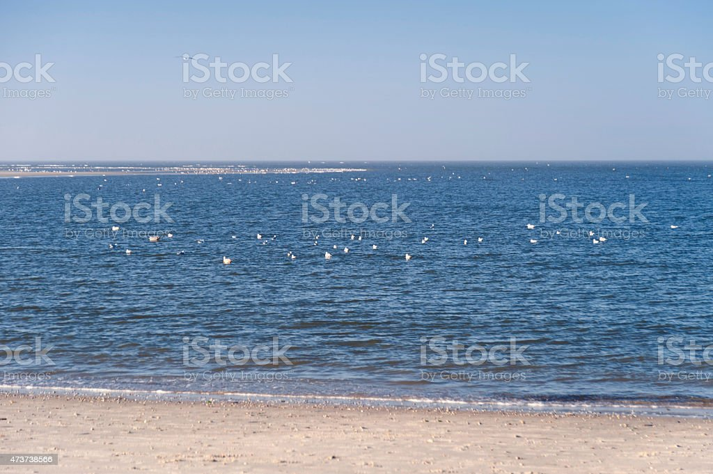 Beach of Amrum stock photo