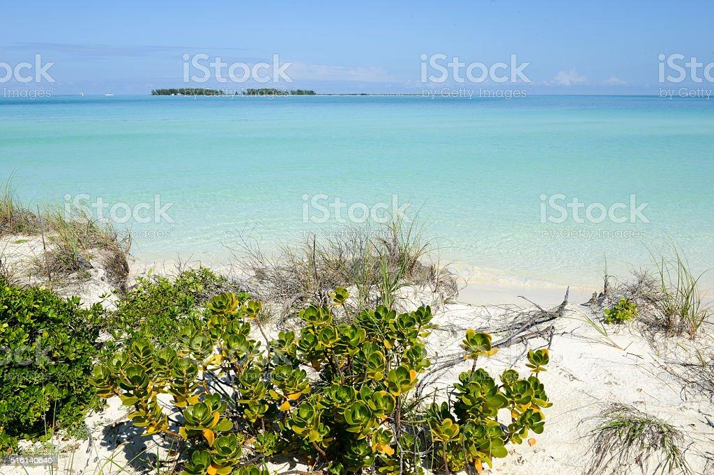 Beach of Cayo Guillermo, Cuba stock photo