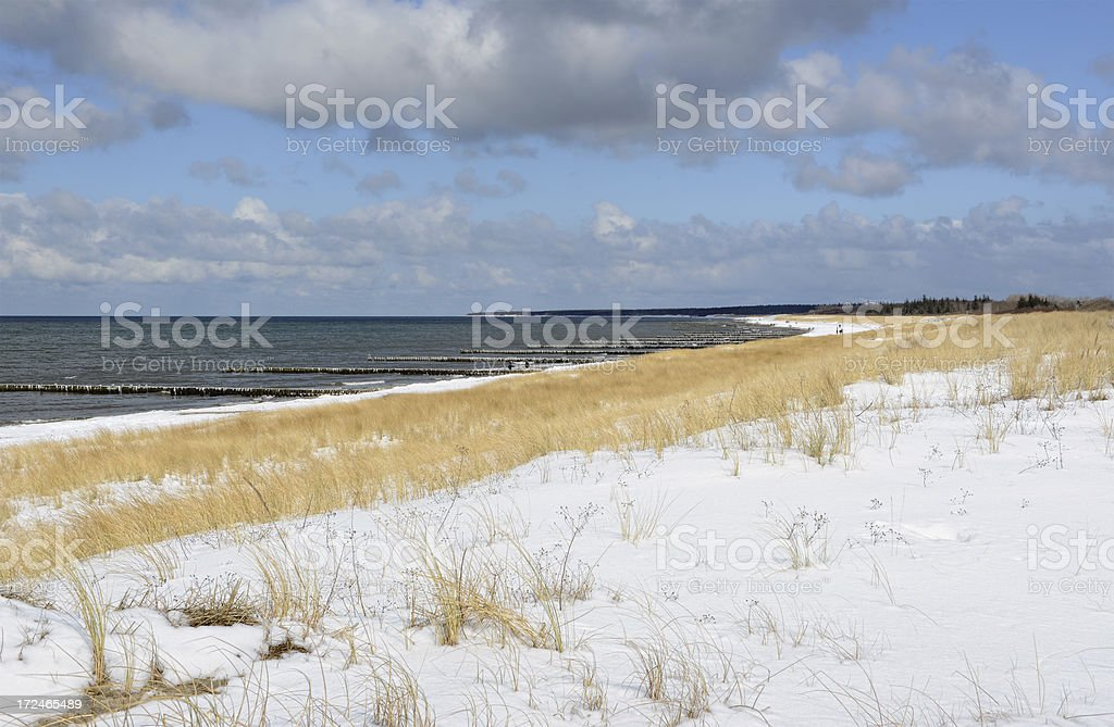 Beach of Darss (Germany) in winter with snow stock photo
