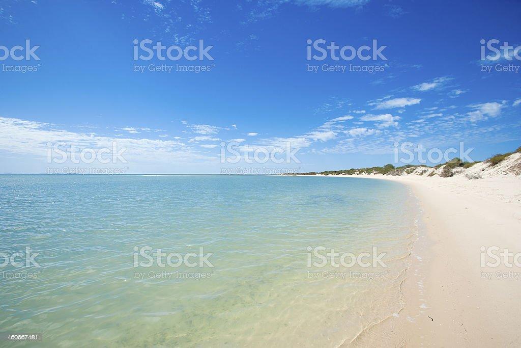 Beach of Monkey Mia in Western Australia stock photo