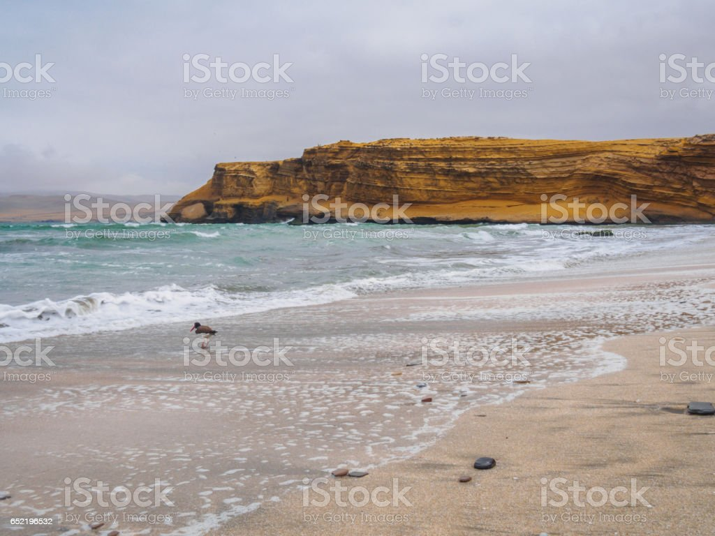 Beach of Paracas Natural Reserve, Peru, on a cloudy day stock photo