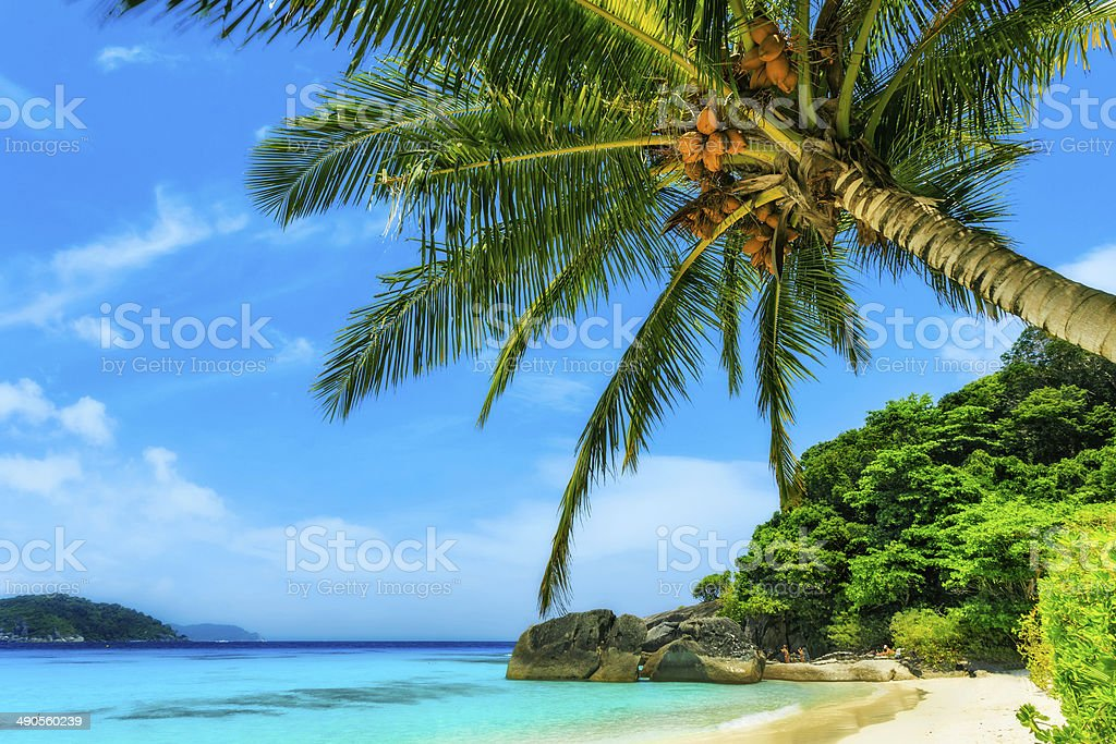 Beach of Similan Islands stock photo