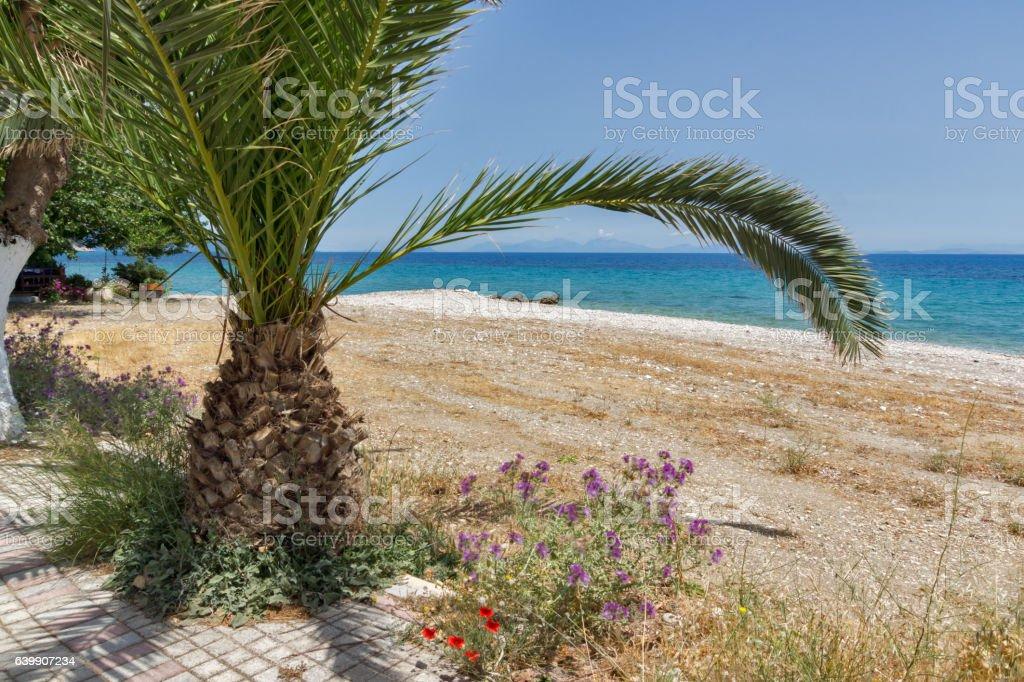 beach of town of Poros, Kefalonia, Greece stock photo