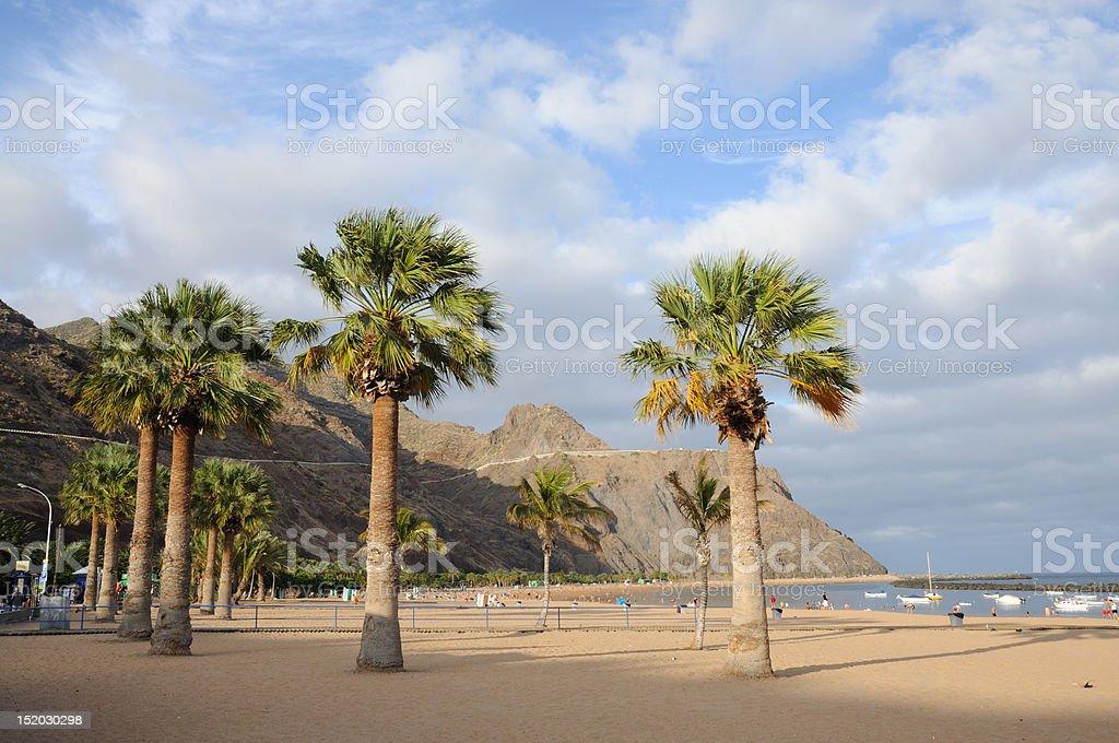Beach on Canary Island Tenerife, Spain royalty-free stock photo