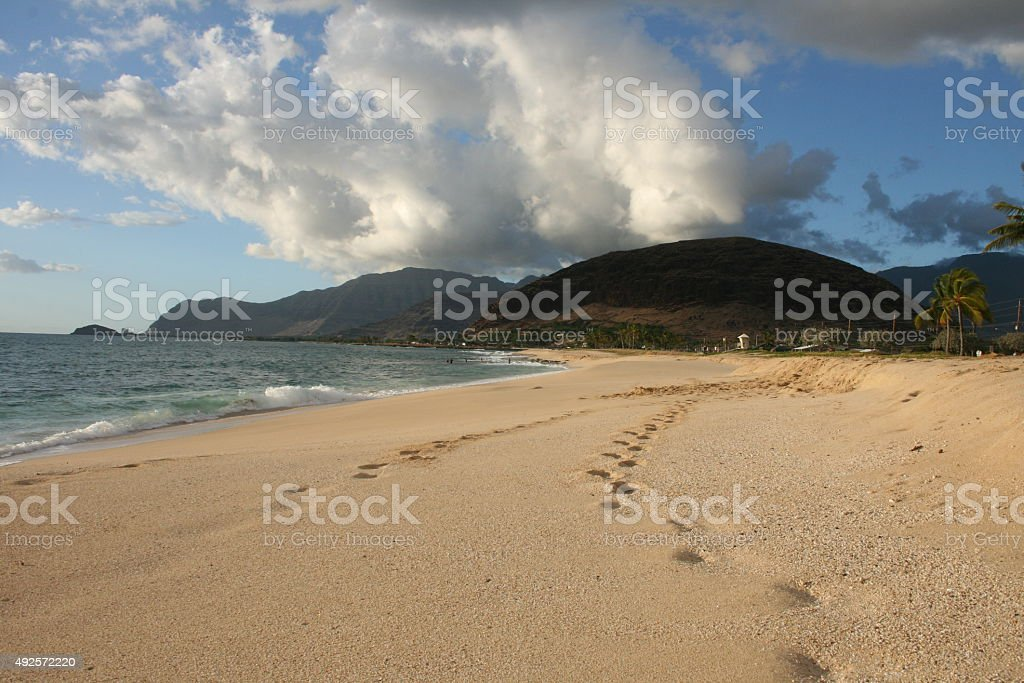 Beach on Hawaii royalty-free stock photo