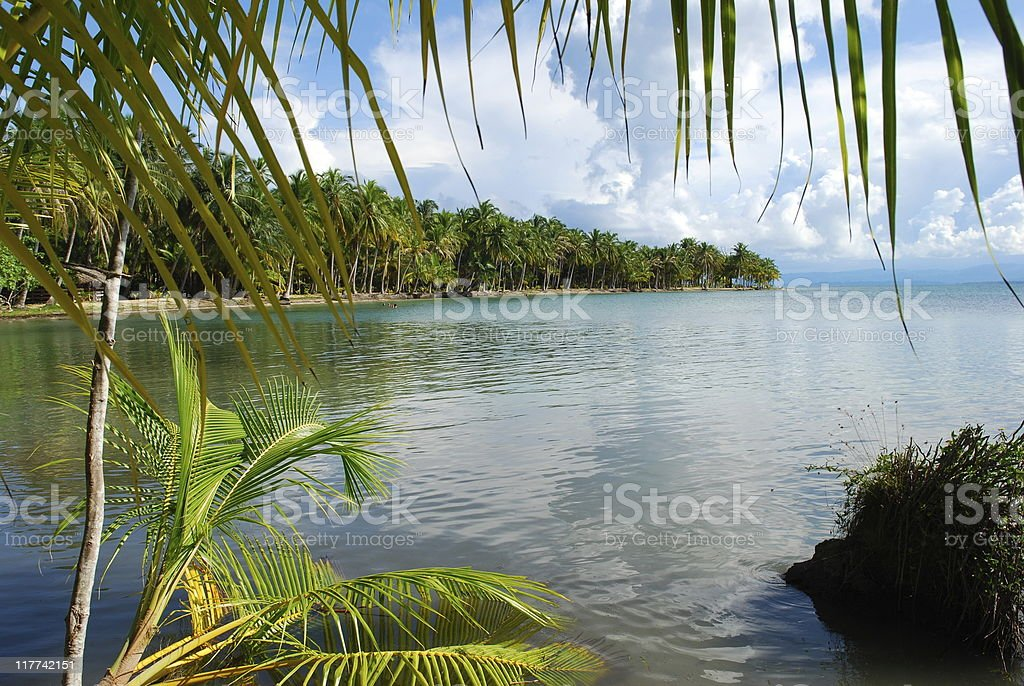 beach on Isla Colon in Bocas del Toro, Panama royalty-free stock photo