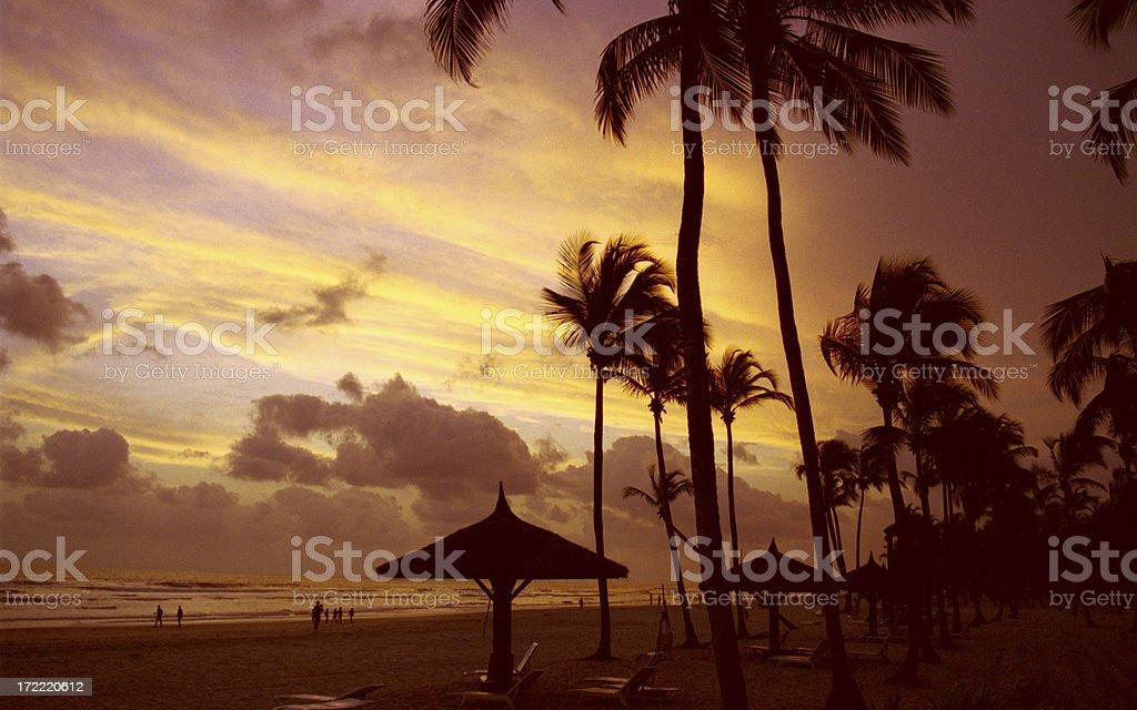 Beach on Ivory Coast stock photo