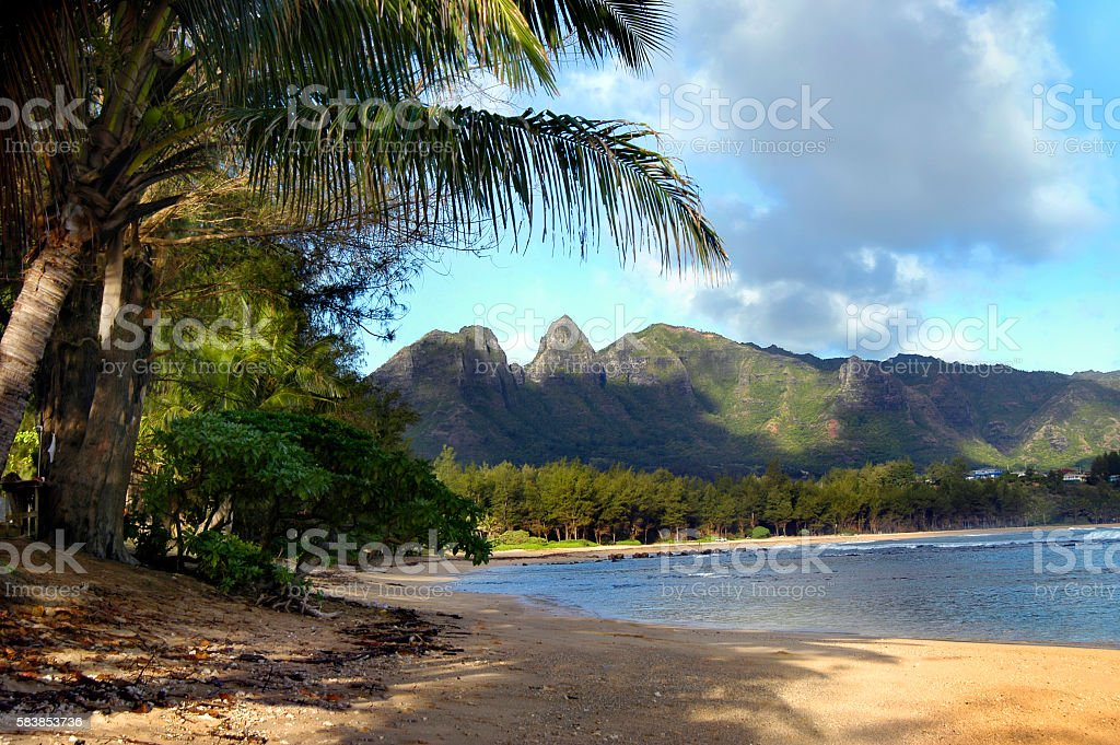 Beach on Kauai stock photo