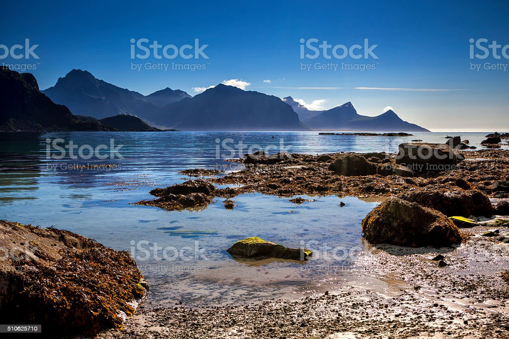 Beach on Lofoten in Unstad, Norway stock photo