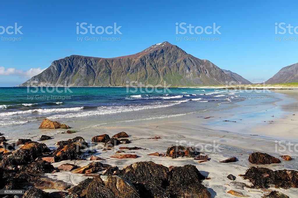 Beach on Lofoten islands in Norway stock photo