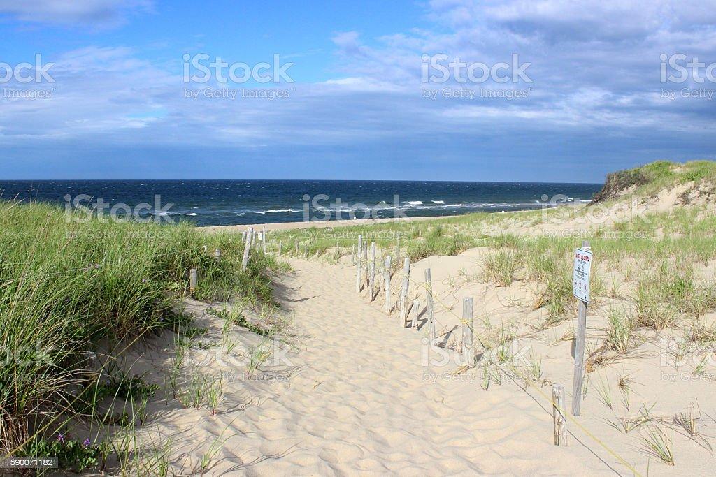 Beach on the Cape stock photo