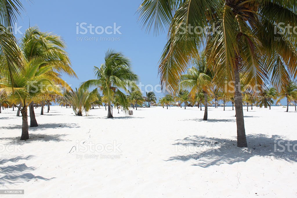 Beach on the Caribbean Sea, Cuba, Cayo Largo stock photo