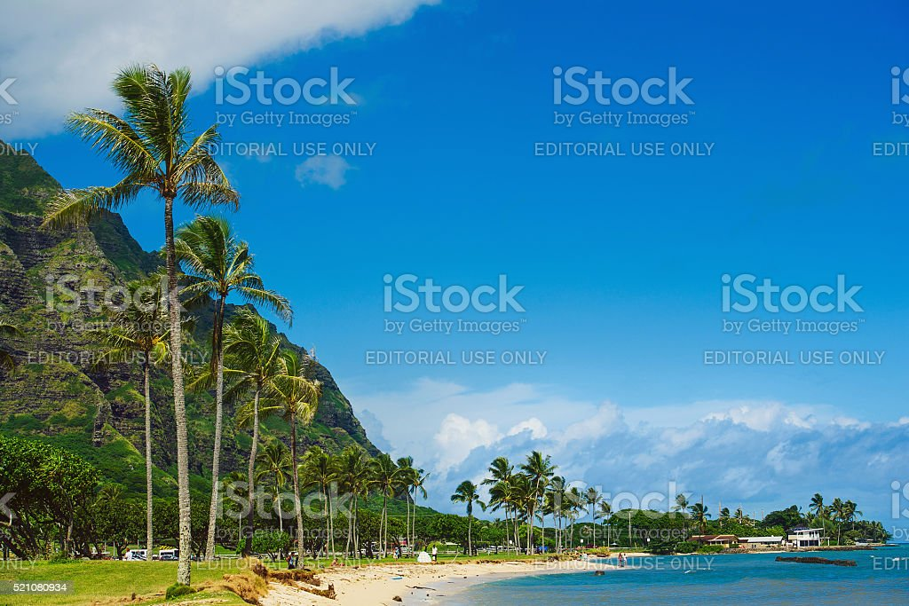 Beach Park seaside view with palm trees stock photo