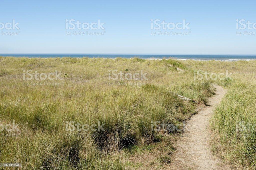 Beach Pathway stock photo
