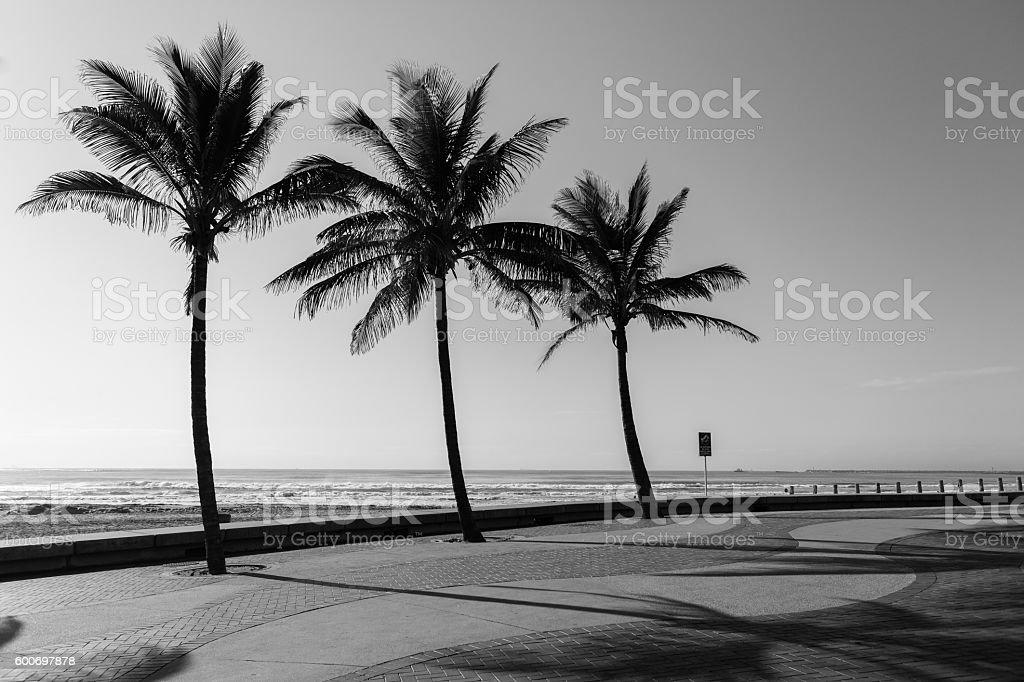 Beach Promenade Black White stock photo