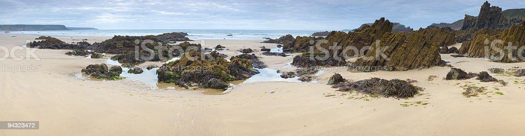 Beach, rockpools, seaweed royalty-free stock photo