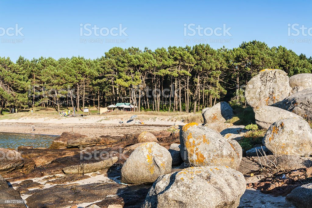 Beach, rocks and trees stock photo