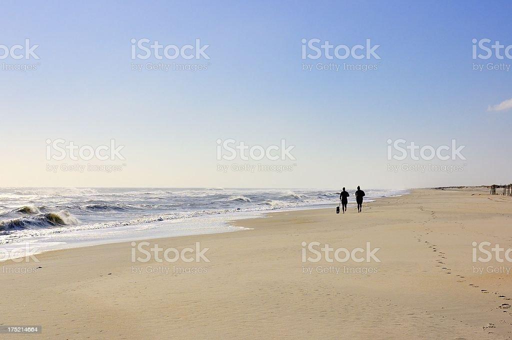 Beach Running In Winter royalty-free stock photo