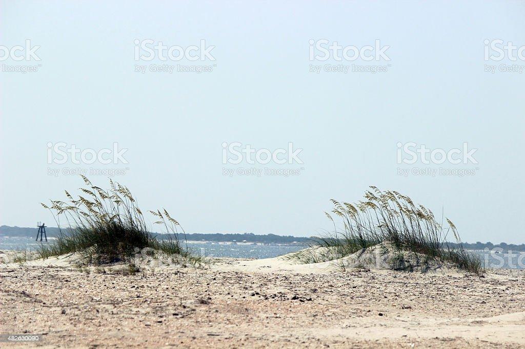 Beach Sand Dunes stock photo