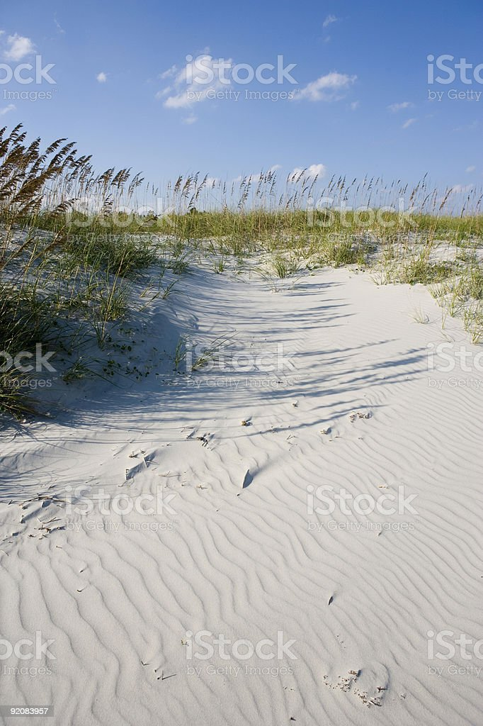 beach sand patterns with grasses royalty-free stock photo