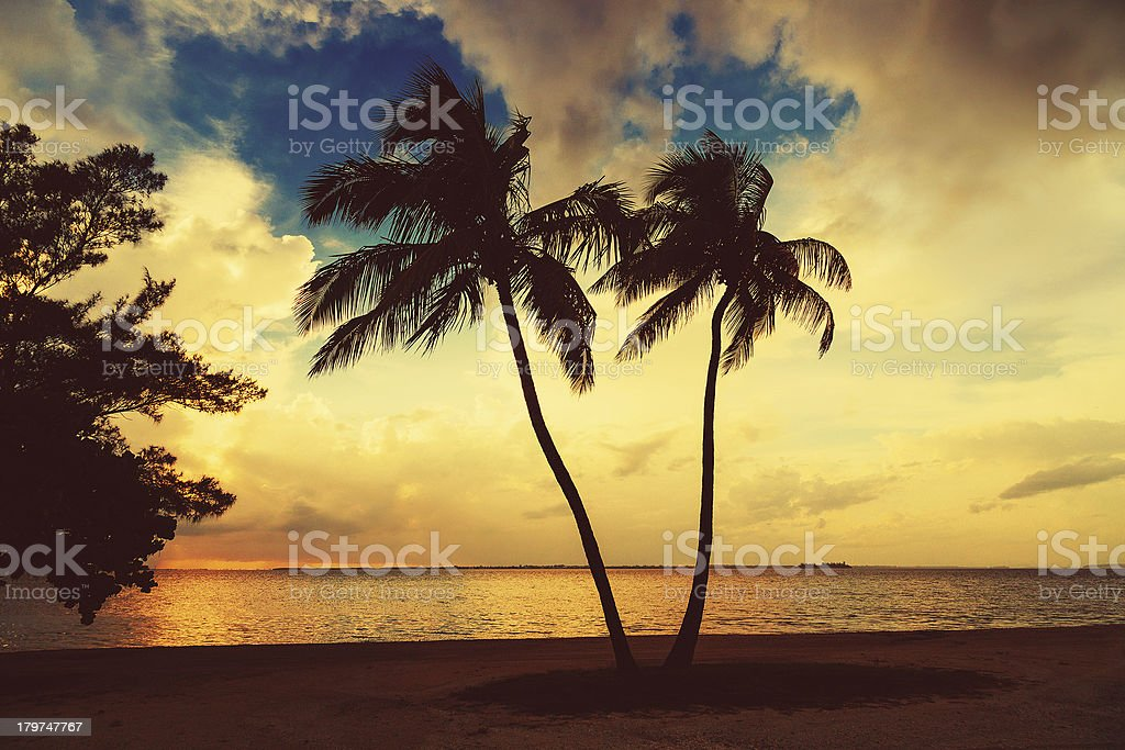 beach sanibel florida stock photo