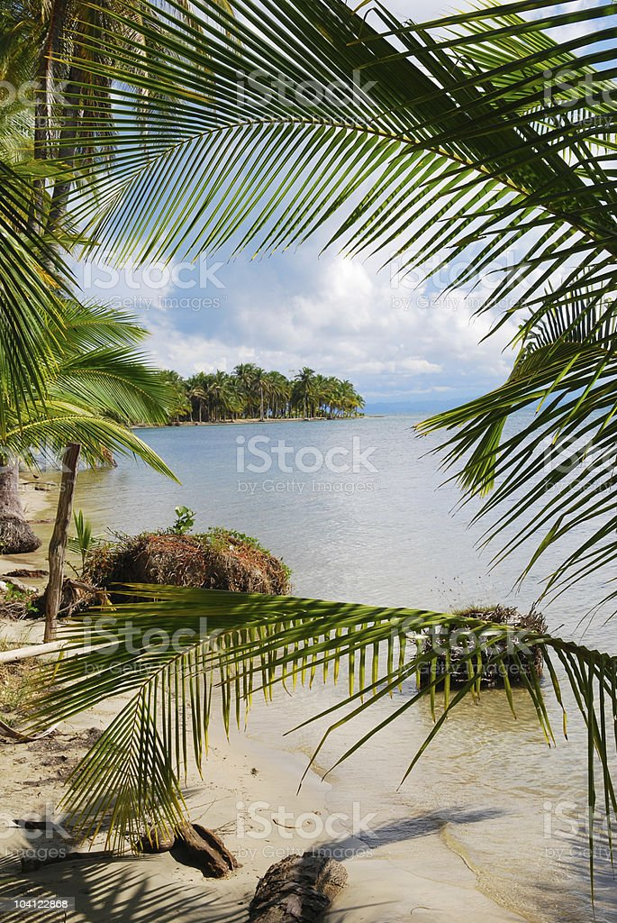 Beach scene framed by palm fronds in Bocas del Toro royalty-free stock photo