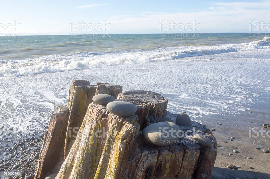 Beach scene with old stump with stones on it stock photo
