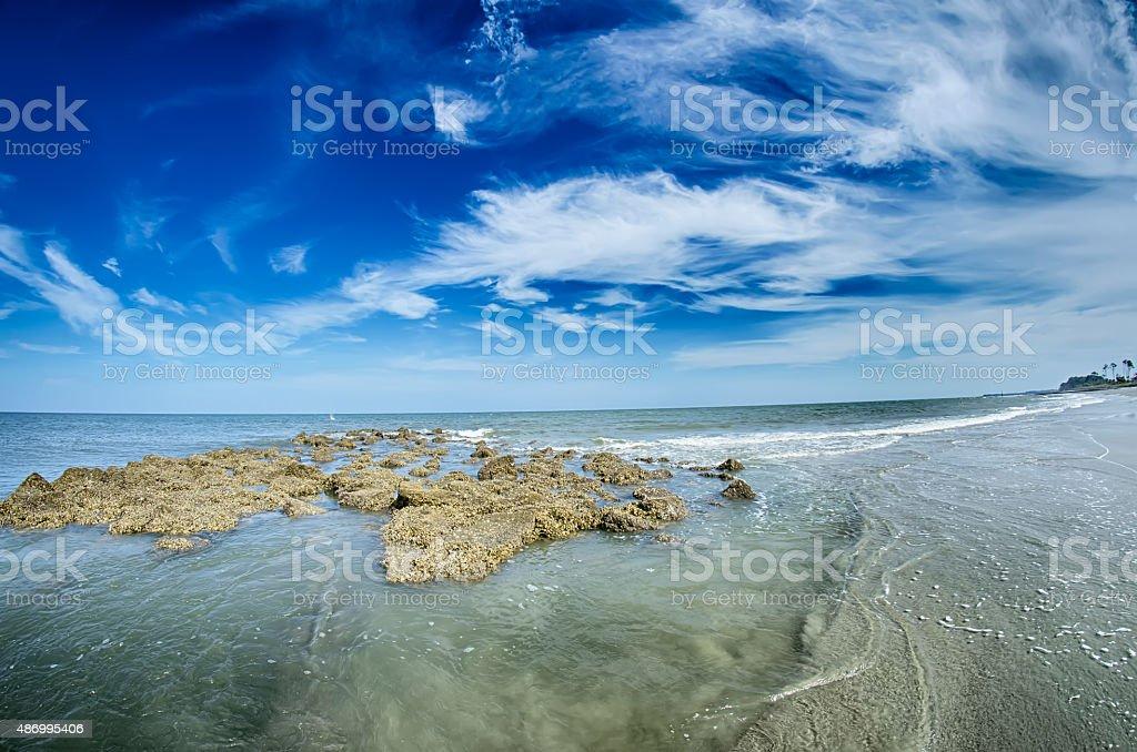 beach scenes at hunting island south carolina stock photo
