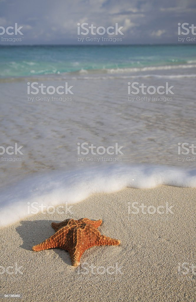 Beach Scenic royalty-free stock photo