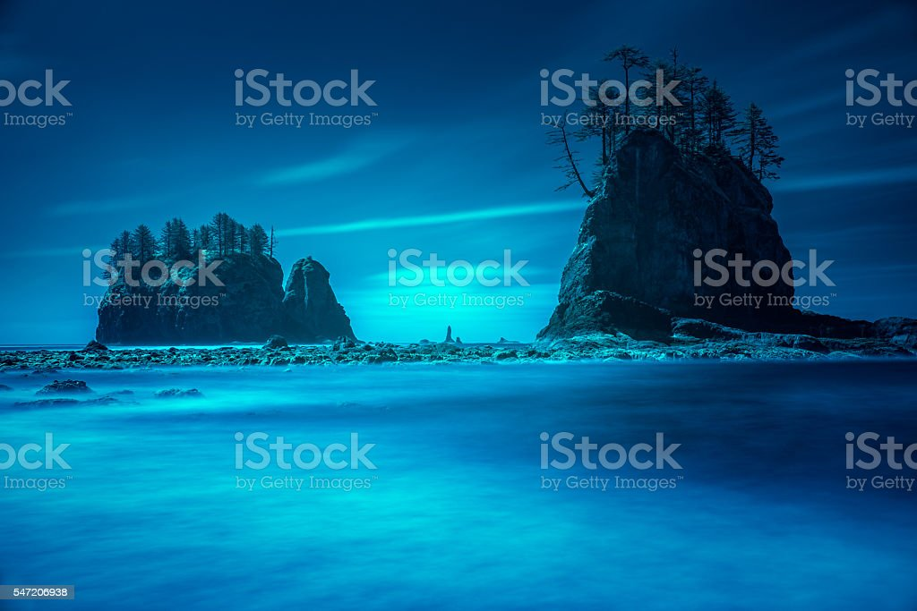 Beach sea stacks with trees stock photo