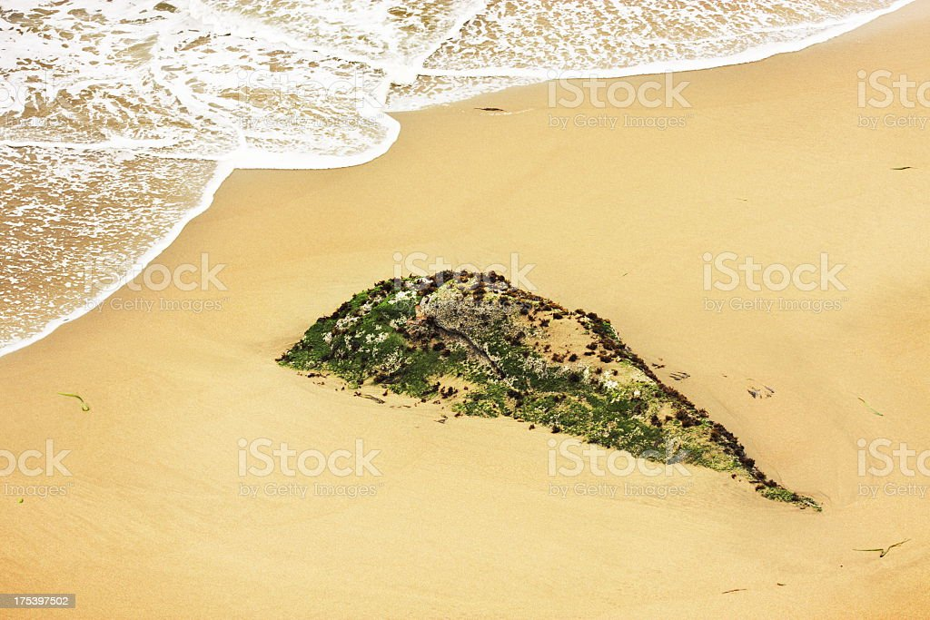 Beach Seaweed Rock Surf Sand stock photo