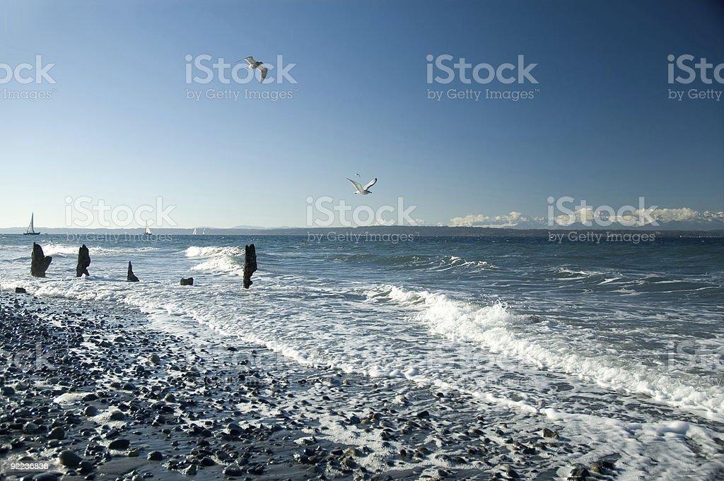 Beach - Shilshohl Bay royalty-free stock photo