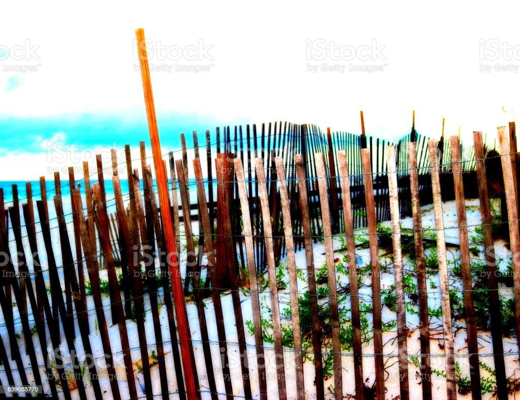 Beach Shot stock photo