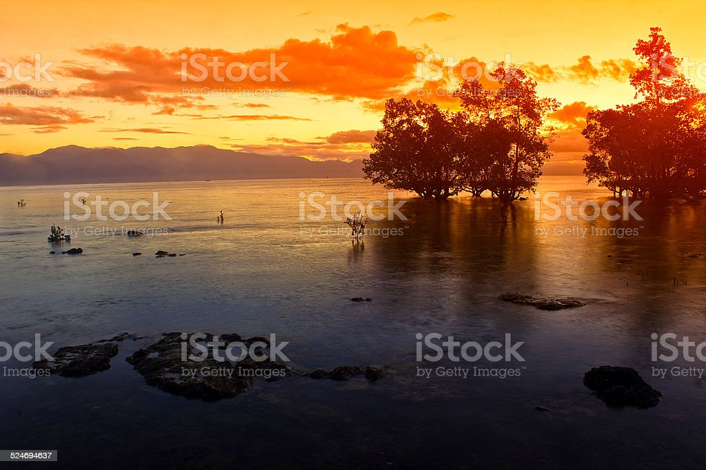 beach sunrise stock photo