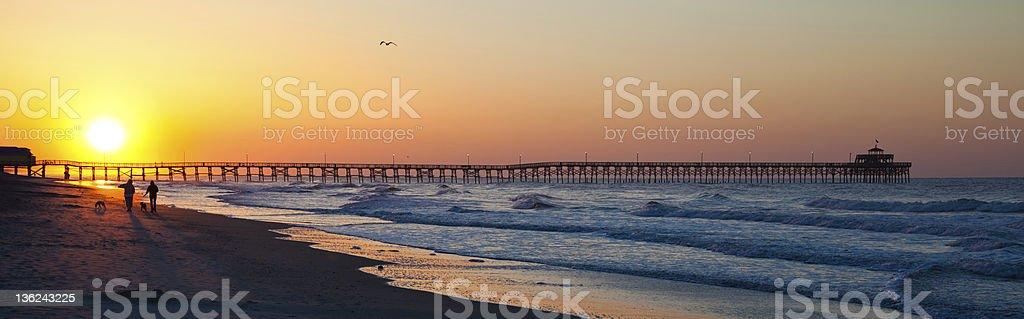 Beach Sunrise / Sunset Dog Walking Wide stock photo